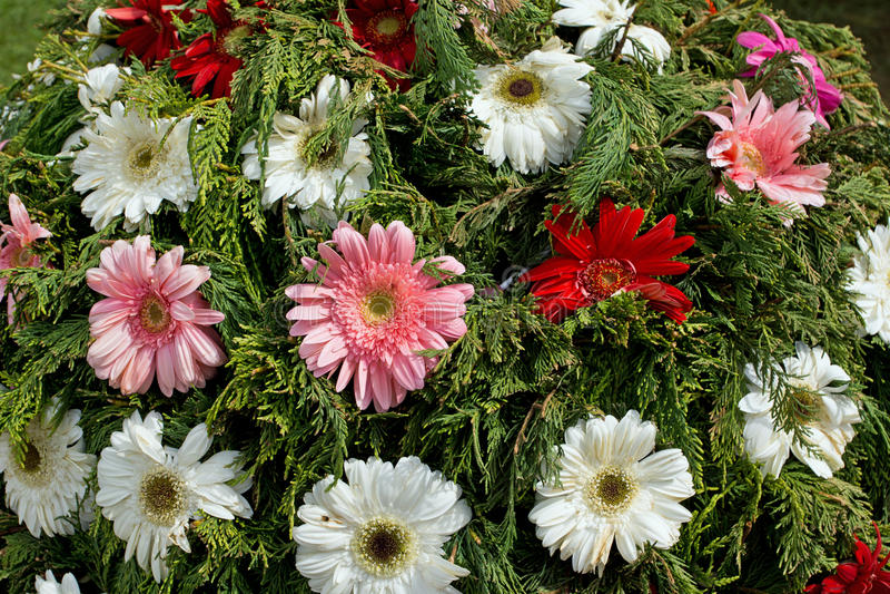 花节日在丰沙尔 免版税库存图片