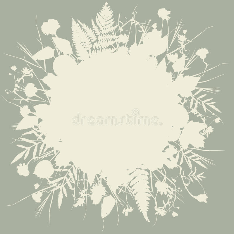 花花卉圆的框架花圈,自然设计离开花元素 春天邀请、婚礼或者gree的夏天设计 向量例证