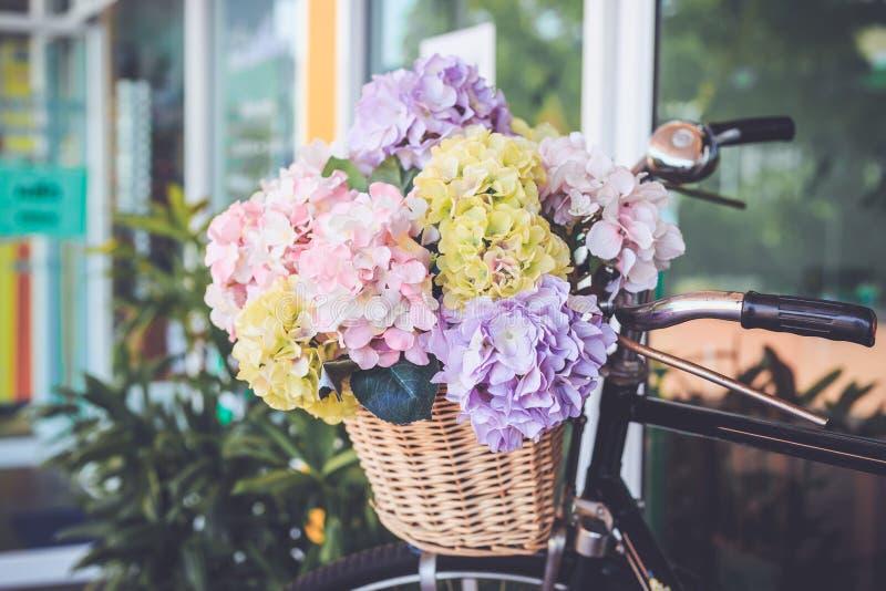 花花束在桶的在葡萄酒自行车前面  庭院 免版税库存照片