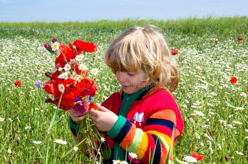 花草甸的孩子 库存照片