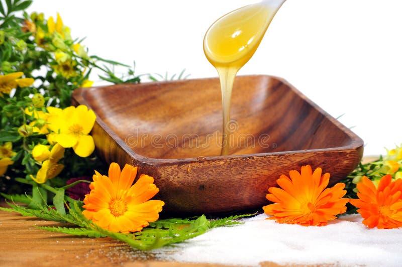 花蜂蜜温泉 免版税库存照片