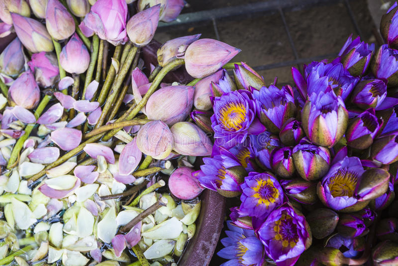 花被卖使用作为在t前面寺庙的奉献物  免版税库存图片