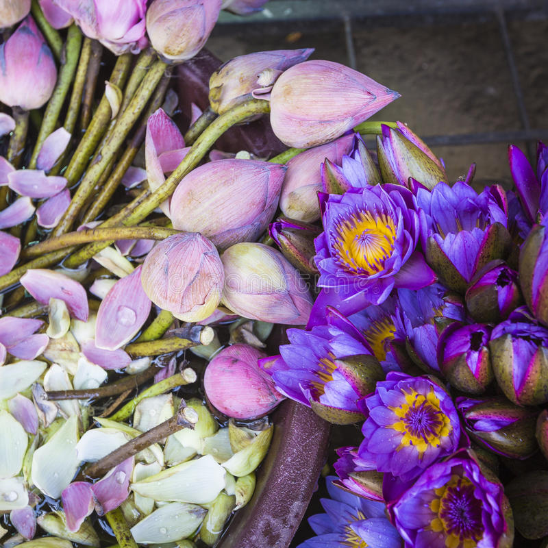 花被卖使用作为在t前面寺庙的奉献物  图库摄影