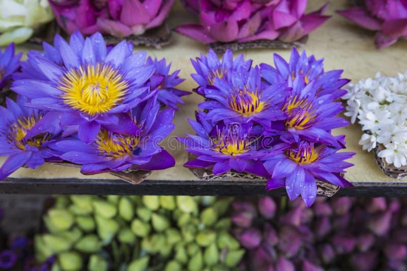 花被卖使用作为在t前面寺庙的奉献物  免版税库存照片