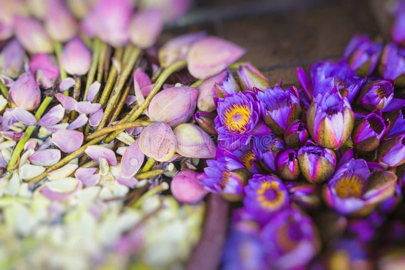 花被卖使用作为在t前面寺庙的奉献物  免版税图库摄影