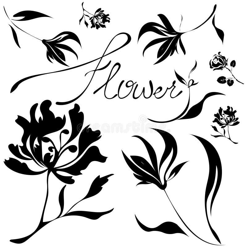 花被设置的向量 黑色白色 库存例证
