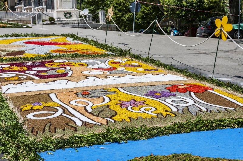 花装饰在库萨诺穆特里,意大利smal村庄  免版税图库摄影