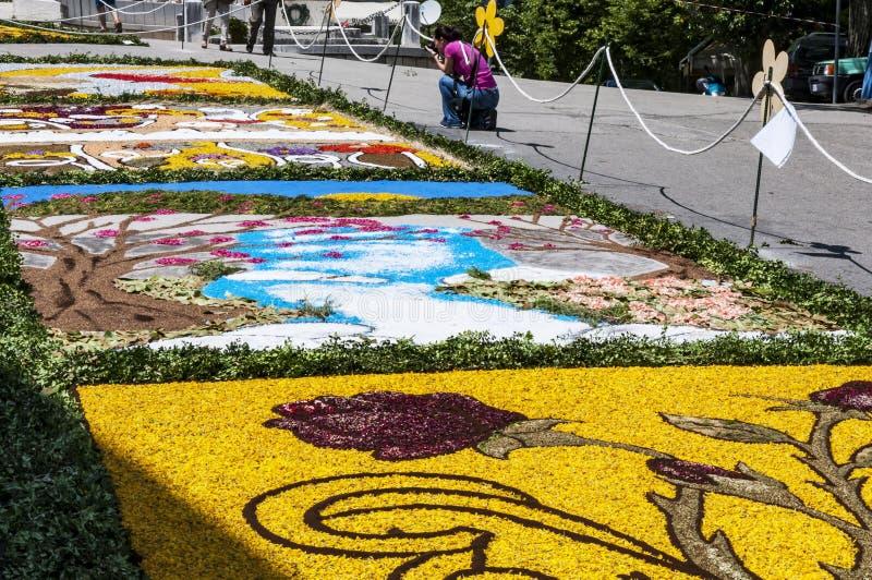 花装饰在库萨诺穆特里,意大利smal村庄  免版税库存照片