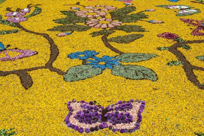 花装饰在库萨诺穆特里,意大利smal村庄  库存图片