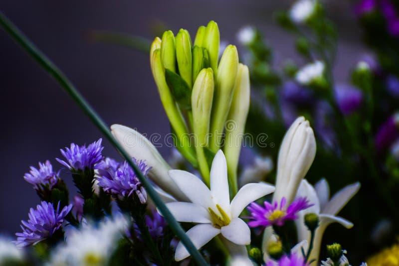 花装饰,鲜花商店,一起装饰用各种各样的种类花,装饰花 图库摄影