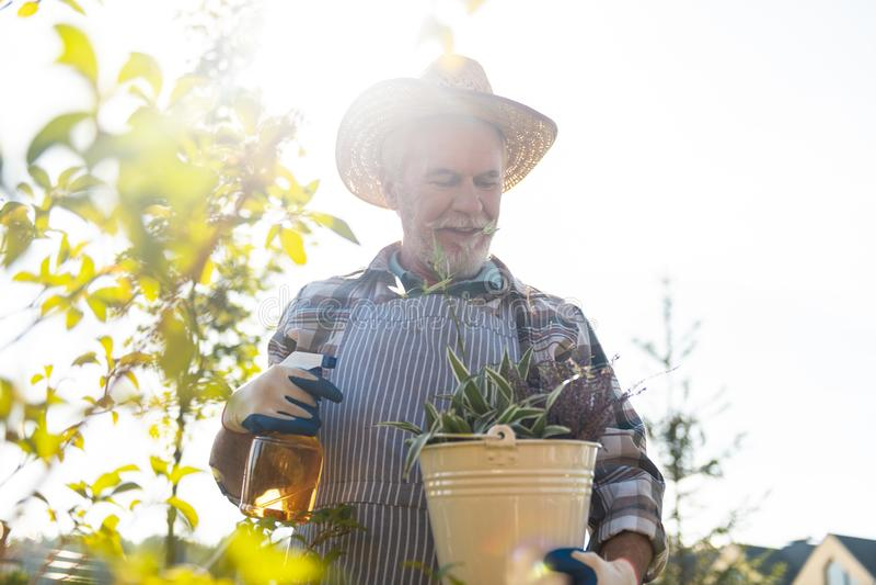 花费时间的宜人的退休花匠在庭院里 免版税库存照片