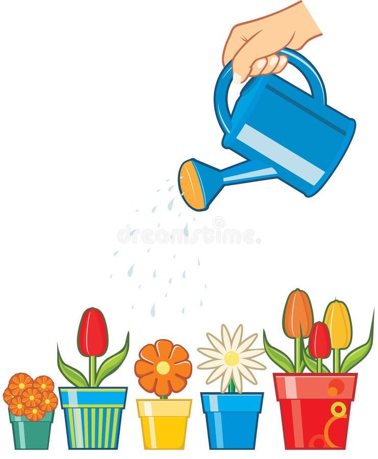 花递浇灌 向量例证