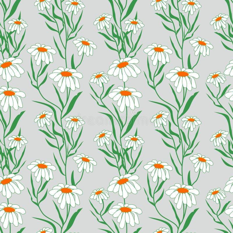 花-与绿色叶子的白色春黄菊的无缝的样式在高尚的灰色背景 织品的,墙纸背景 皇族释放例证