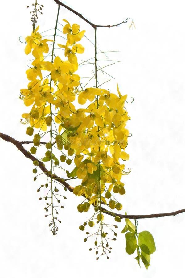 花绽放,水彩样式 免版税库存图片
