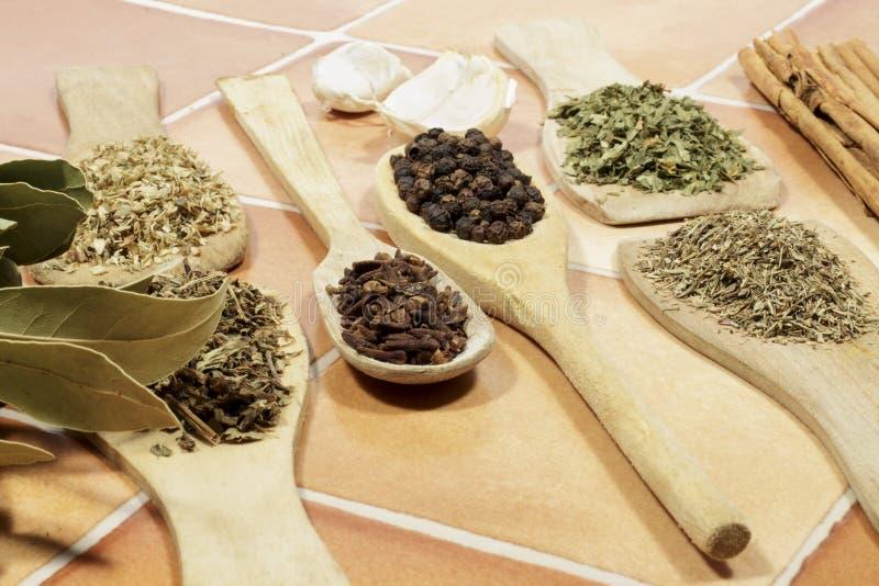 芳香干作为香料使用的草本和种子在烹调 免版税库存图片