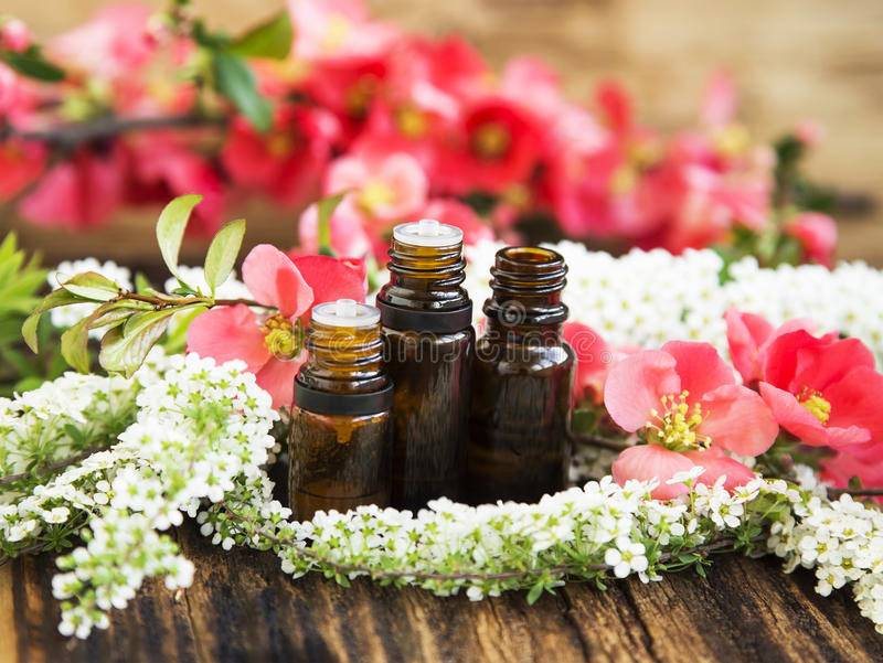 芳香疗法在瓶的花精华 免版税库存图片