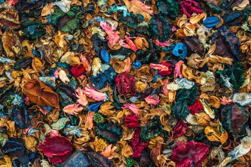 芳香疗法干芳香花纹理背景,许多美好的充满活力的颜色的杂烩混合顶视图  r 免版税库存照片