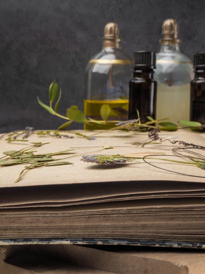 芳香精油和化妆瓶在干花中,医药草本品种 天然化妆品和skincare,草本 免版税库存图片