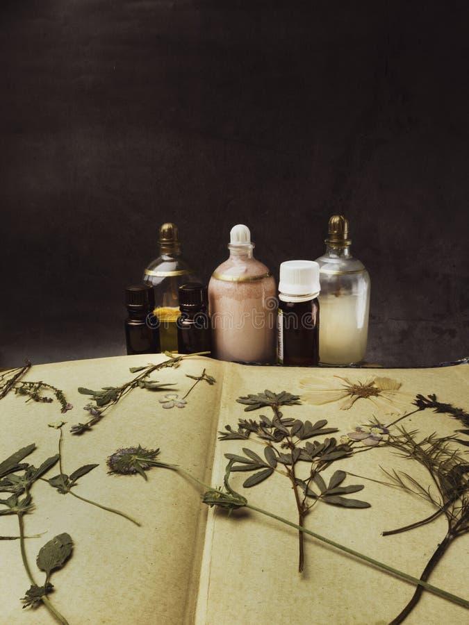 芳香精油 在干花中的化妆瓶,医药草本品种 天然化妆品和skincare,草本 库存图片