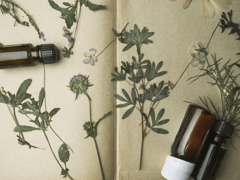 芳香精油 在干花,医药草本中的顶视图瓶 天然化妆品和skincare,草本混合物 免版税图库摄影