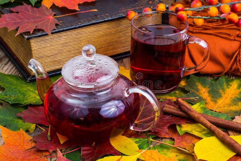 芳香红色茶,书,在木桌上的五颜六色的秋叶 库存照片