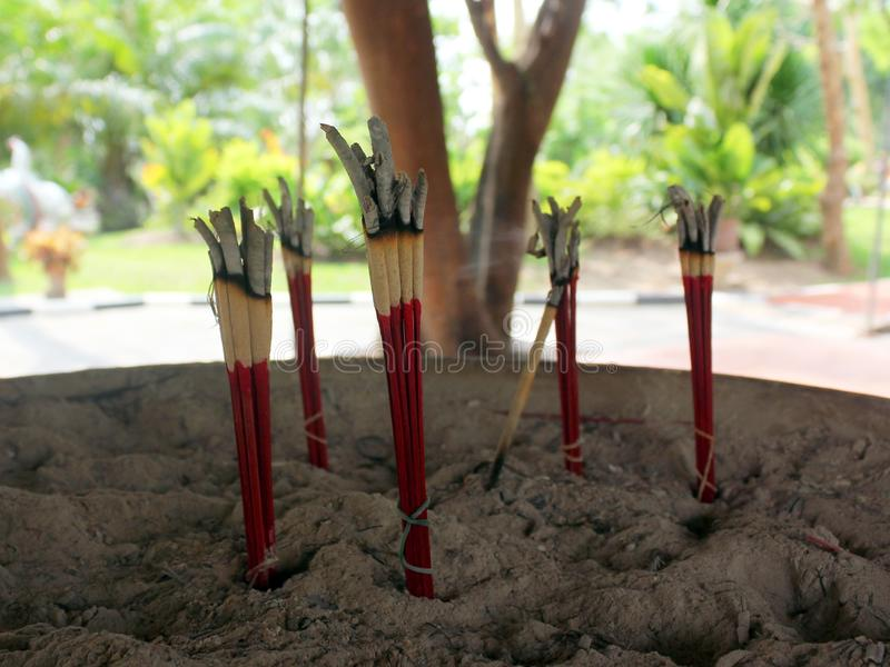 芳香香火燃烧在寺庙使用祈祷对菩萨 库存图片