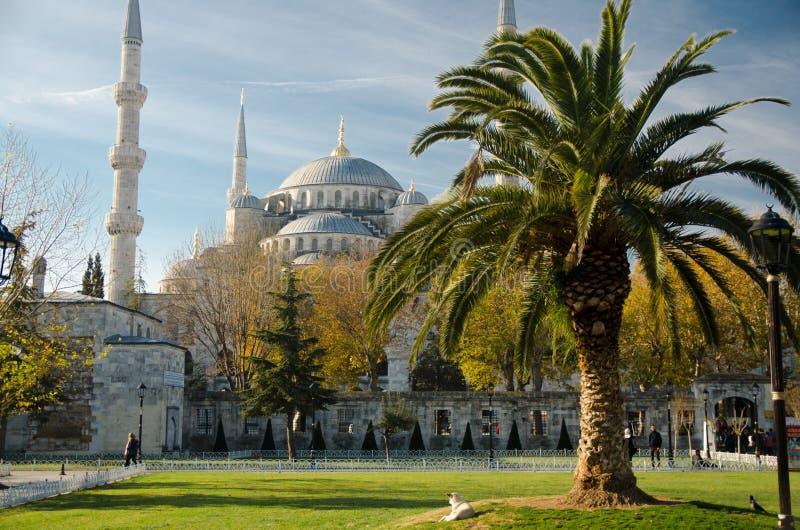 苏丹艾美Camii说出Blue Mosque,伊斯坦布尔,土耳其名字 库存图片