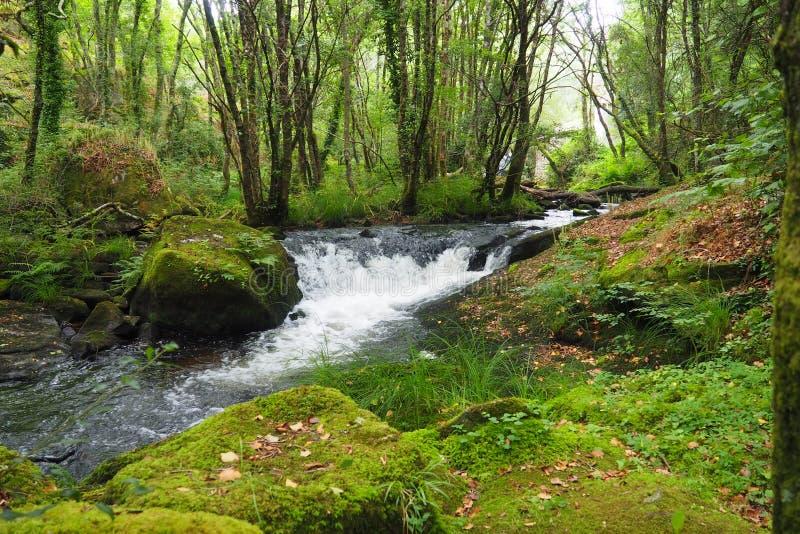 苏打水,la coruña强和小洪流在ulla河的 免版税库存图片