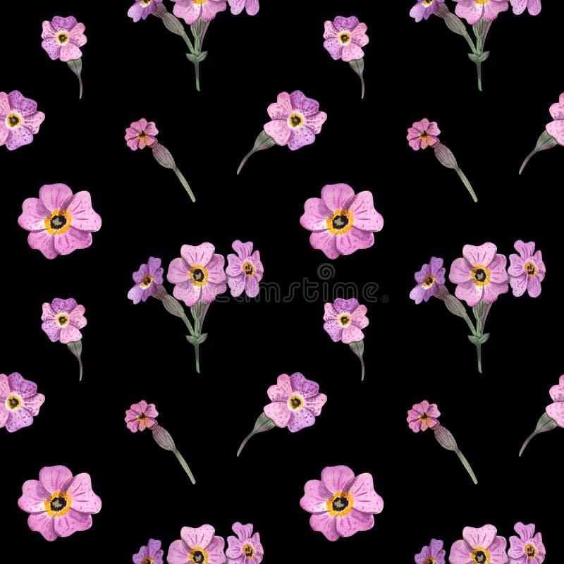 苏格兰无缝的样式水彩野花  苏格兰报春花 向量例证