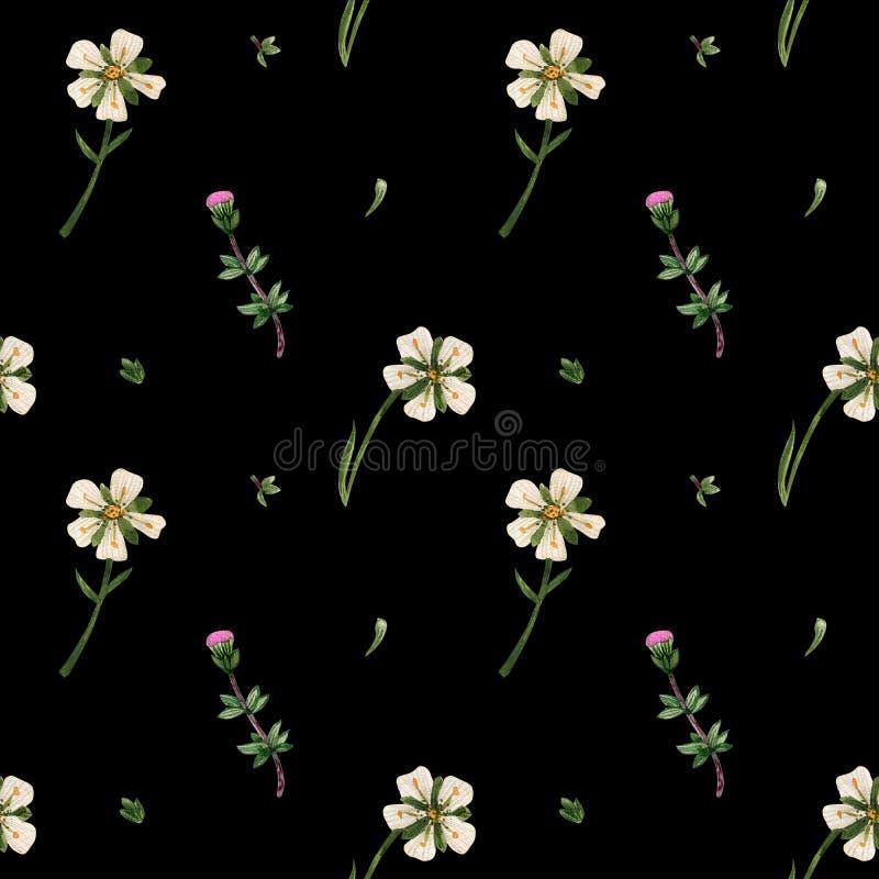 苏格兰无缝的样式水彩野花  库存例证