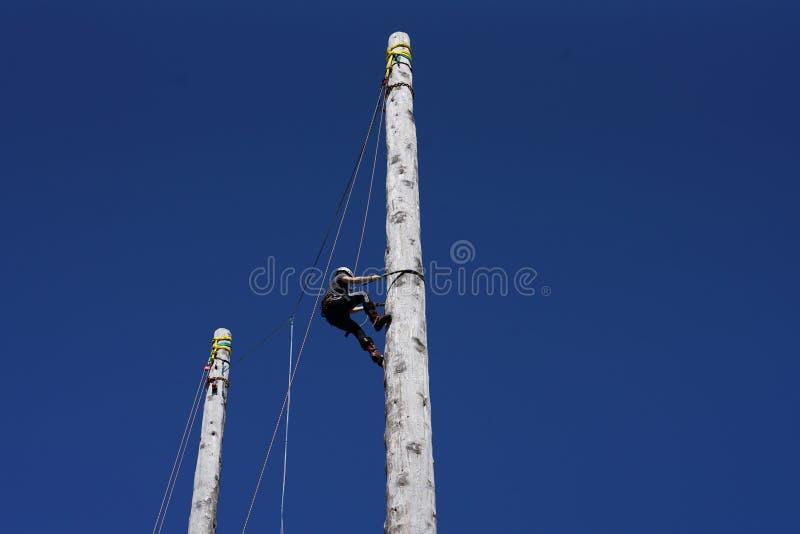 苏格兰波兰人上升和电线杆上升的冠军 库存图片