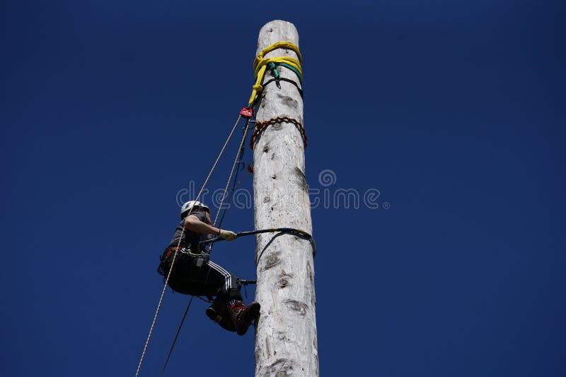 苏格兰波兰人上升和电线杆上升的冠军 免版税图库摄影
