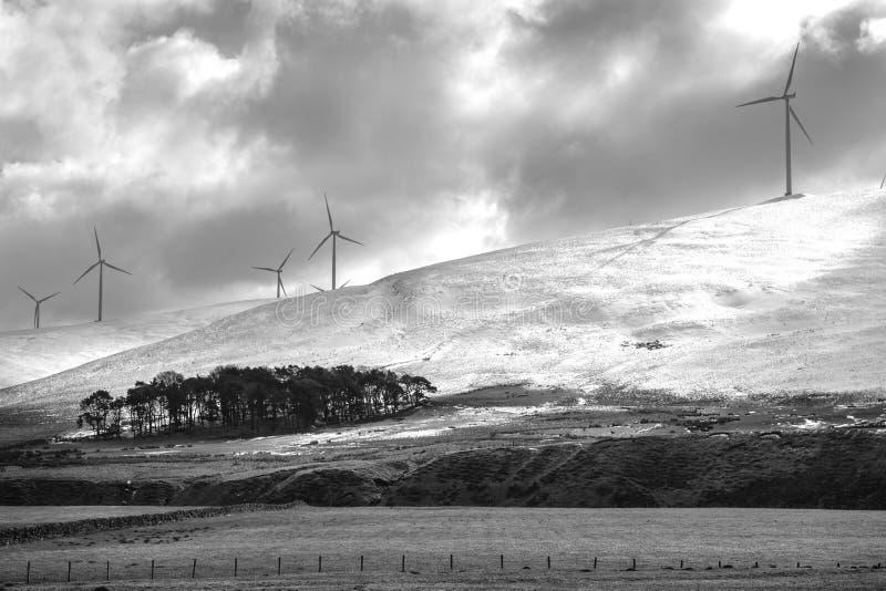 苏格兰风力场 图库摄影