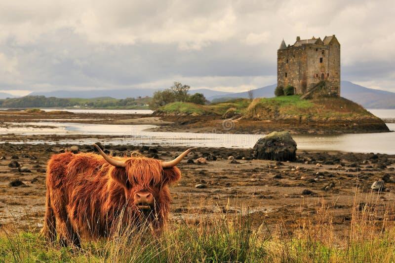 苏格兰高地横向 免版税库存照片