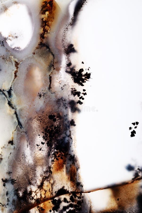 苔玛瑙 库存图片