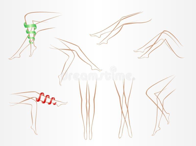 苗条女性腿等高以在轻的背景的各种各样的姿势 向量例证