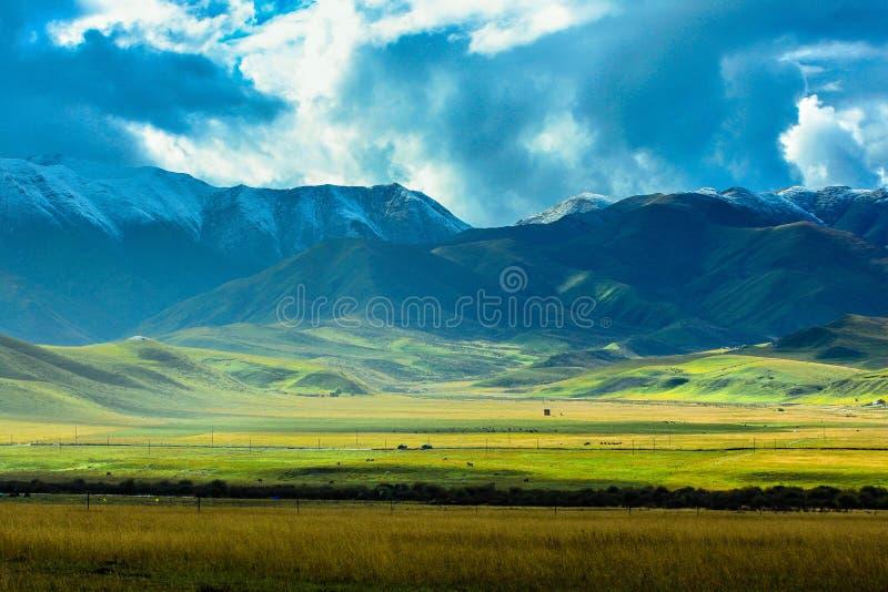 若尔盖草原,在甘肃南部,中国 免版税库存照片