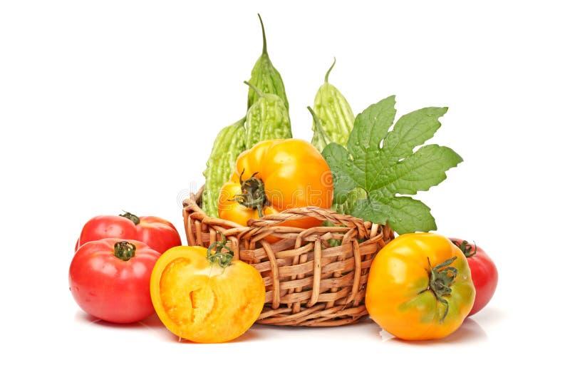 苦涩瓜和蕃茄 库存图片