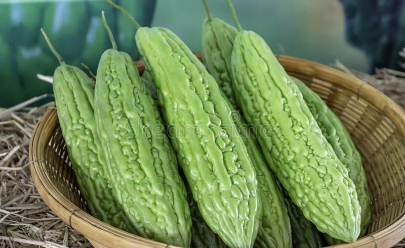苦涩金瓜新鲜从竹篮子的庭院 库存图片