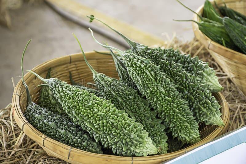 苦涩金瓜新鲜从竹篮子的庭院 免版税图库摄影