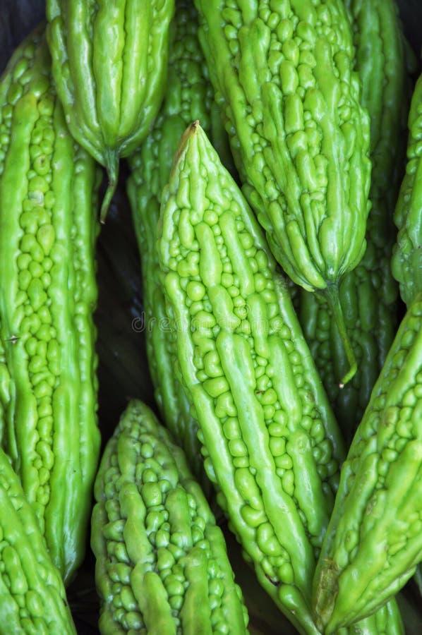 苦涩金瓜蔬菜 库存图片