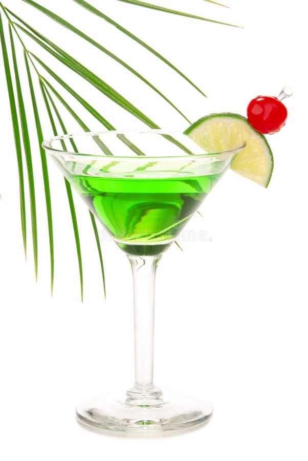 苦艾酒精鸡尾酒绿色马蒂尼鸡尾酒 库存图片