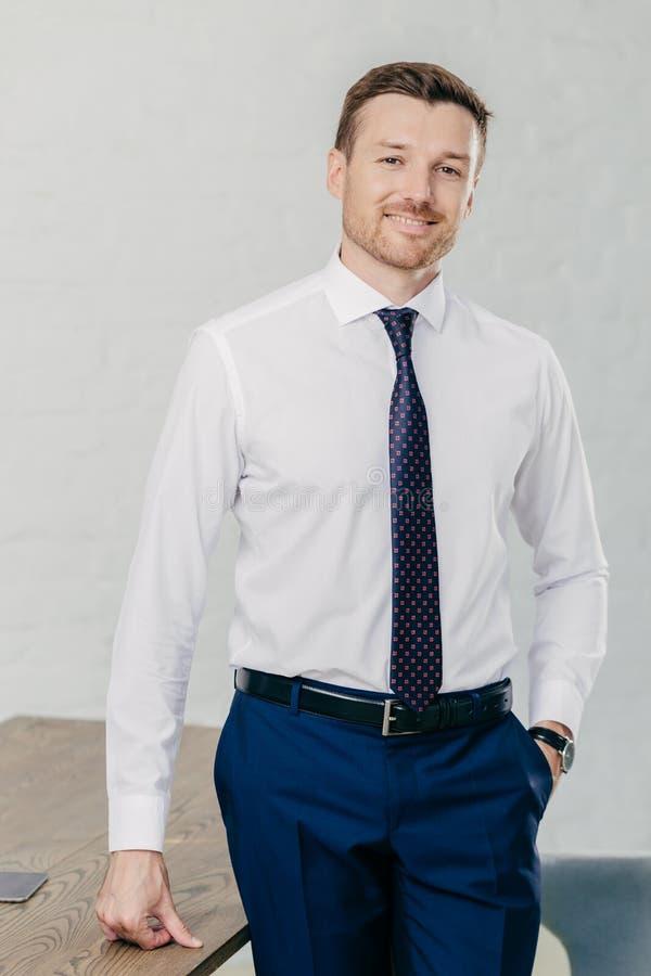 英俊的不剃须的男性企业家室内射击穿正式衬衣,领带,并且长裤,在口袋保留手,遇见事务 库存图片