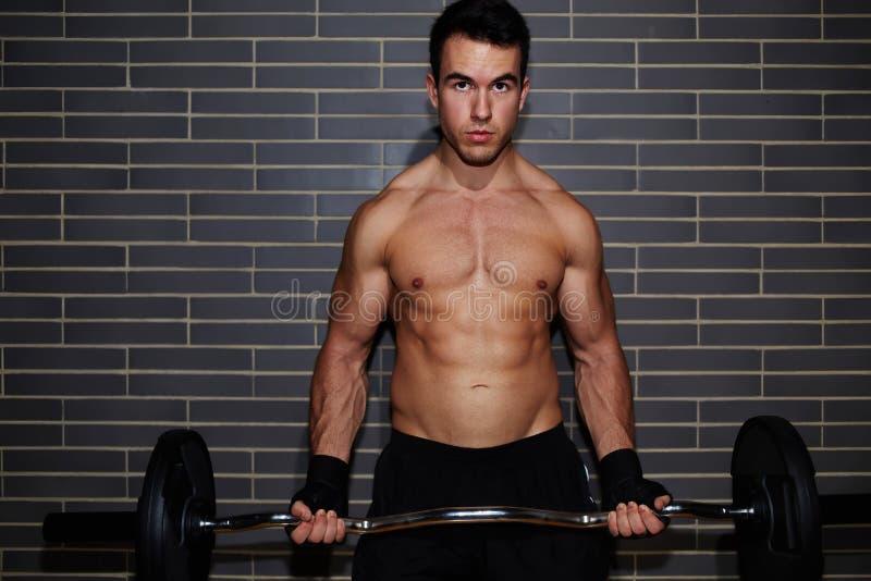 年轻英俊的人举重运动员举的杠铃行使胸口的和二头肌干涉在健身房 免版税库存图片