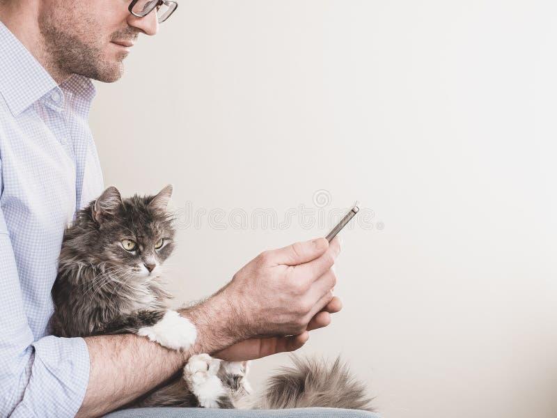 英俊的人和逗人喜爱的小猫 免版税库存图片
