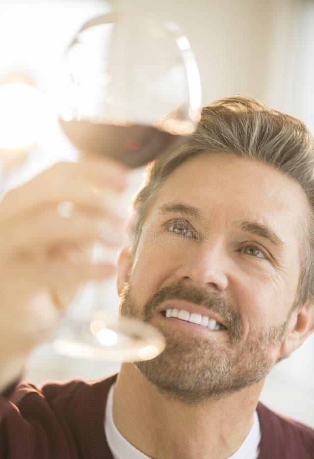 英俊的人审查的杯红葡萄酒 库存图片
