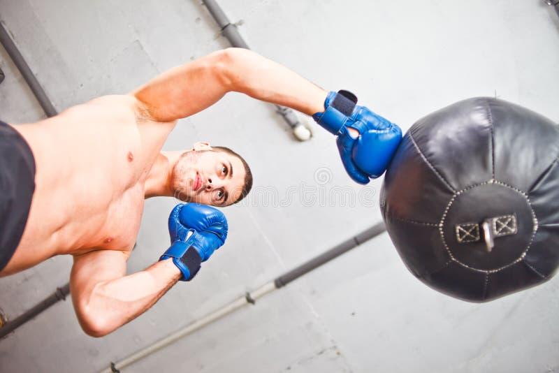 英俊的体育人拳击手火车递 免版税库存照片