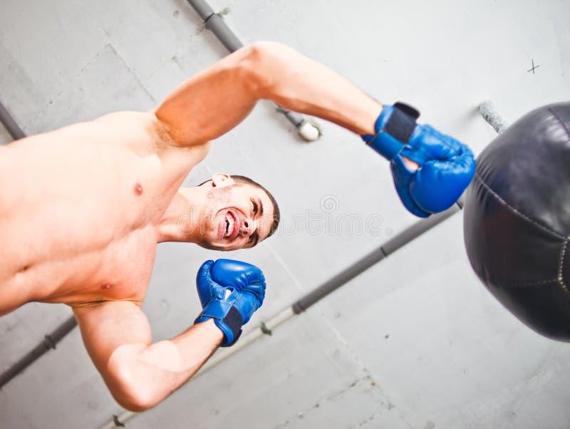 英俊的体育人拳击手训练手动打孔机 免版税库存图片
