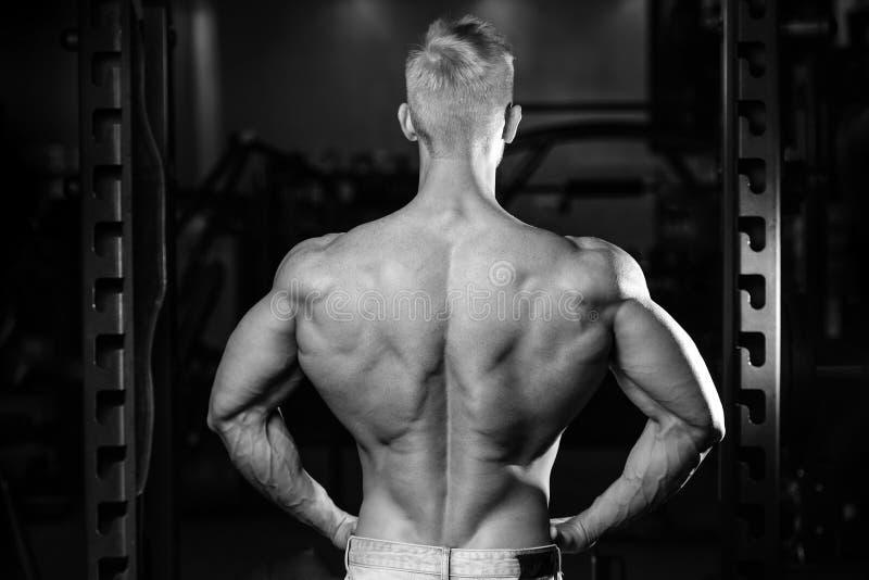 英俊的加大背部肌肉的力量运动人饮食训练. 吵嘴, 能源.