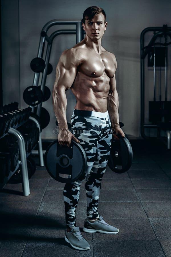 英俊的加大饮食的训练的力量运动人干涉与哑铃和杠铃 坚强的爱好健美者,完善 库存图片